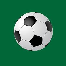 fudbalski-savez-lucani-|-fso-lucani