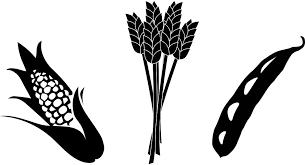 najpovoljnija-zemljoradnicka-zadruga-zrenjanin-|-zemljoradnicka-zadruga-zrenjanin